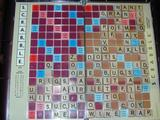 /photo_album/A_Day_in_the_Life/Scrabble/pic_7859.jpg